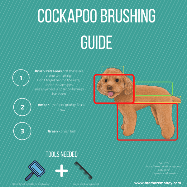 Cockapoo dog brushing guide