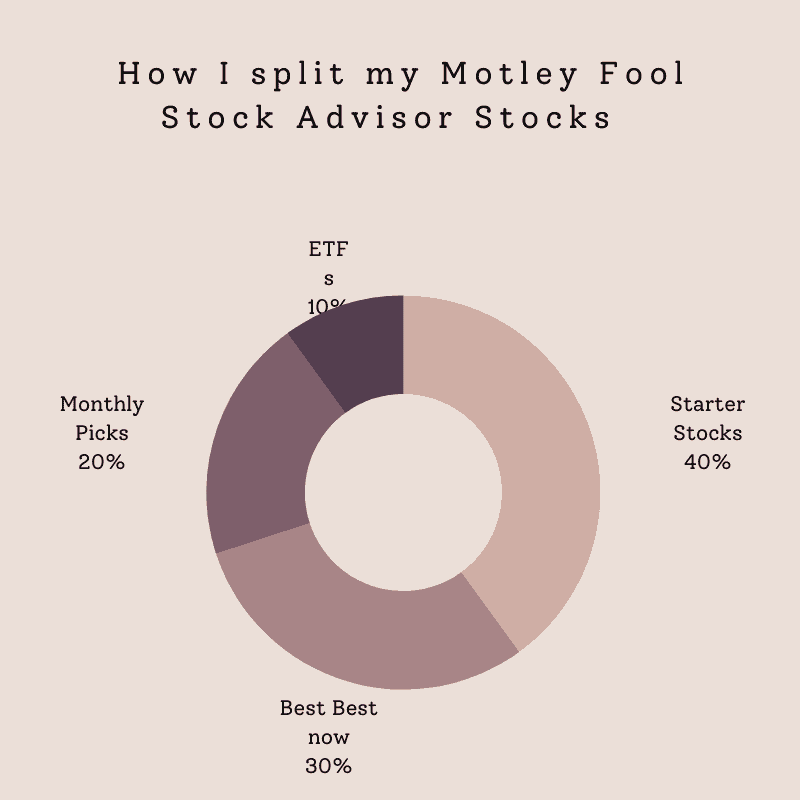 Motley fool stock picks